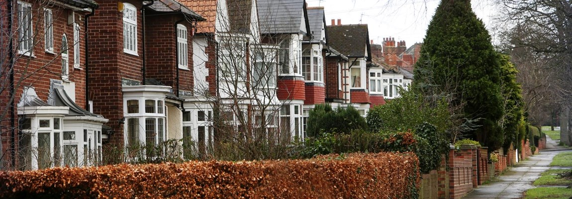 Divided nation: Well heeled west end Darlington suburbia